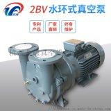 2BV系列水環式真空泵廠家直銷/品質保證