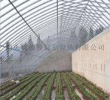 供应镀锌带椭圆管骨架蔬菜日光温室