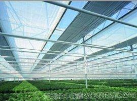 遮阳网室(荫棚) 蔬菜大棚 花卉种植温室大棚