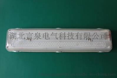 GLD280-2x9w全塑三防LED熒光燈