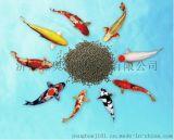 漂浮鱼饲料加工设备在山东济南霖奥机械