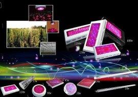 LED大功率植物灯
