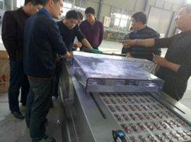 全自动真空包装机 卤蛋 咸鸭蛋拉伸膜连续式抽真空包装封口机