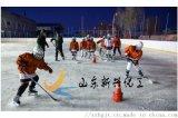 厂家专业销售冰球场围栏 轮滑场围栏