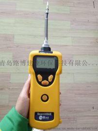 泵吸式可燃气  检测仪 PGM-1600