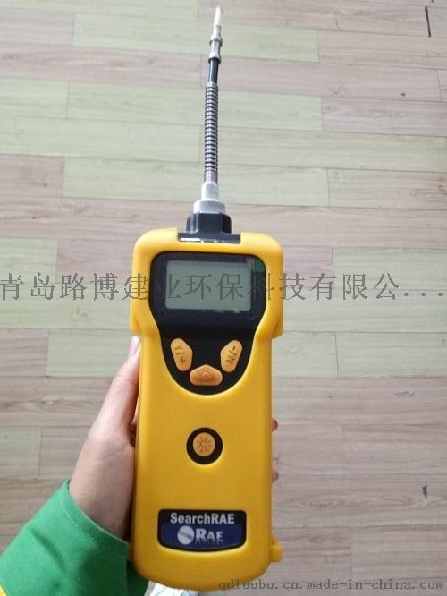 泵吸式可燃氣毒氣檢測儀 PGM-1600