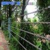 公路缆索护栏网、缆索护栏厂家、5索防护栏