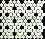 陶瓷馬賽克泳池磚馬賽克 佛山馬賽克