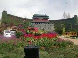 北京大型立体绿雕厂家仿真绿雕公司绿雕动物制作厂家
