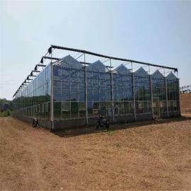 温室工程 玻璃温室建设 种植型玻璃智能温室
