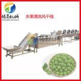 果蔬加工流水線 淨菜加工生產線 配菜中心全套設備