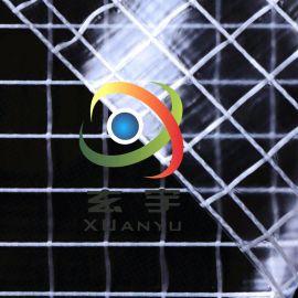 超大方格2*2PVC透明夹网布 PVC网格布