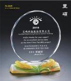 團體比賽冠軍獎  創業先鋒獎杯  團體競賽獎  水晶陶瓷獎杯