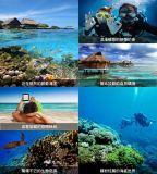 台湾绿岛浮潜缤纷三日游