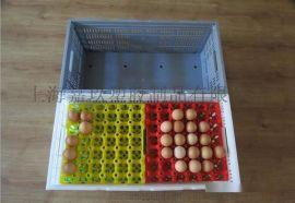 上海工厂直销塑料折叠鸡蛋筐蛋托