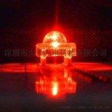 食人魚LED