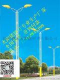 新疆克拉瑪依市烏爾禾區新農村太陽能路燈