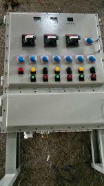 立式防爆钢板箱 BXM 带仪表 带断路器