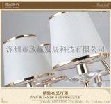 致贏批發LED水晶燈10個燈頭正白暖白質保五年