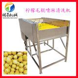 四川柠檬毛辊喷淋清洗机