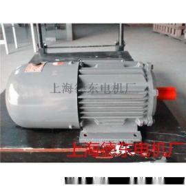制动电机YEJ2-132S-6  3KW无励磁制动