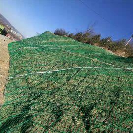 边坡防护钢丝网-钢丝绳防护网-边坡防护钢丝网厂家