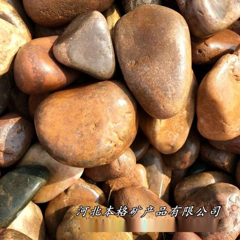 本格供應天然鵝卵石 景觀鋪路礫石 水處理園藝鵝卵石