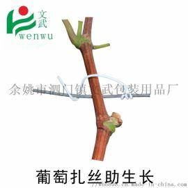 **葡萄枝蔓扎丝 环保包塑铁丝 0.9圆