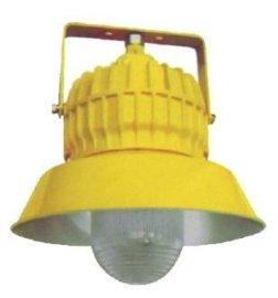 BPC8710防爆平台灯