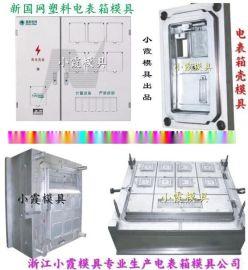 黄岩模具制造 标准新国网单相九位电表箱注塑模具专业厂家