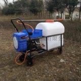 志成厂家供应电动打药机手推式喷雾器大棚杀虫机