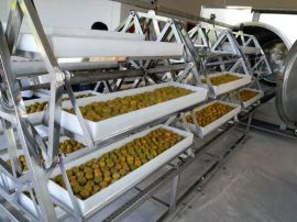 中药材、农产品真空微波干燥设备,微波真空干燥机