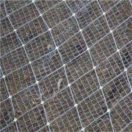 热镀锌钢丝网-菱形勾花网-绿化勾花网