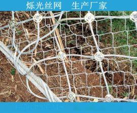 SNS柔性边坡主动防护网 被动防护网 钢丝绳网