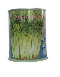 安徽倍思**应生产铁盒铁罐 芹菜种子罐专业定制