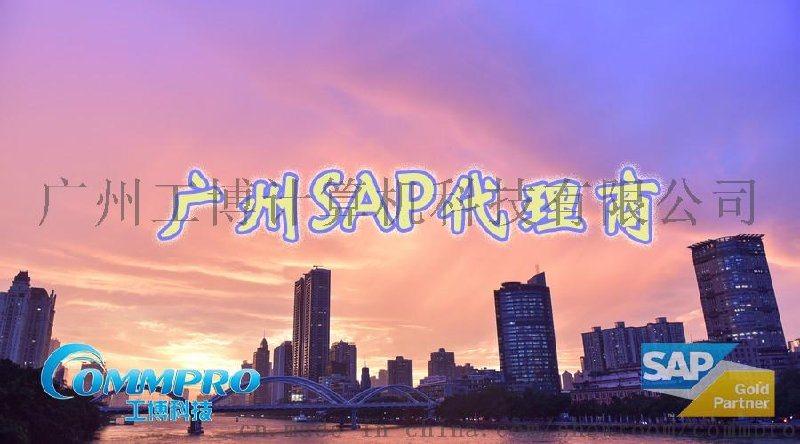SAP實施商怎麼選,廣州SAP實施