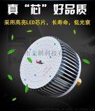 led灯 LED球泡