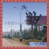 公園裝飾陶瓷瓷燈柱訂做 特色景觀陶瓷燈柱