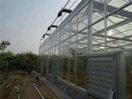 建设玻璃温室,园艺温室,智能温室大棚建设