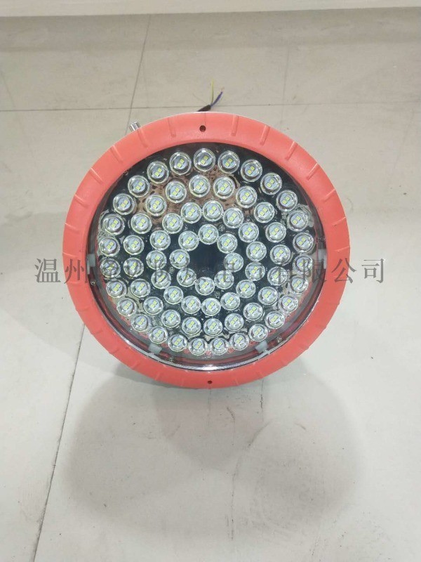 LED防爆泛光燈HRT91-100W壁裝式
