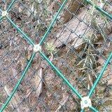 邊坡防護綠網,過塑防護網,包塑主動防護網