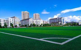 7人制足球草+足球场人造草坪+运动足球场草坪