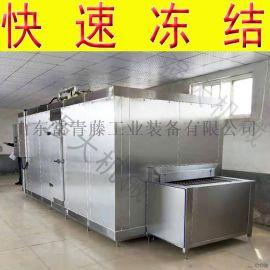 【冷冻时间可调】草莓大产量速冻机