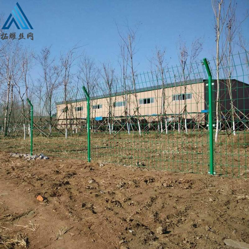 围墙护栏网 果园围栏网