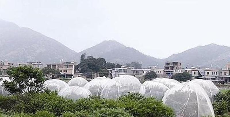 厂家直销 农用防虫网80公分蔬菜防虫网 85公分水产养殖网
