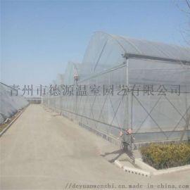 薄膜连栋温室 温室大棚厂家 花卉蔬菜温室