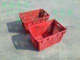 海南塑料椰子筐|江西塑料水果箩|青岛海鲜水产塑料筐