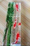 东莞玻璃工艺品彩印加工厂家