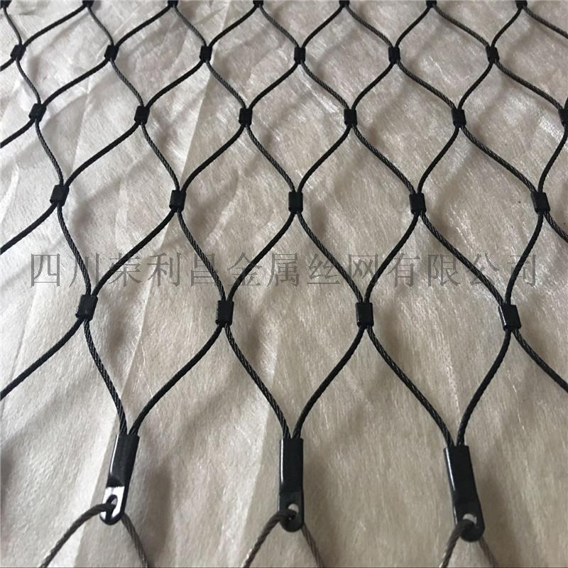 成都不鏽鋼鳥網廠家,四川鋼絲繩鳥網,四川鳥語林頂網