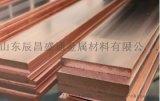 紫铜排接地母铜排铜母排红铜排